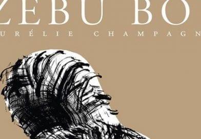 Zebu boy